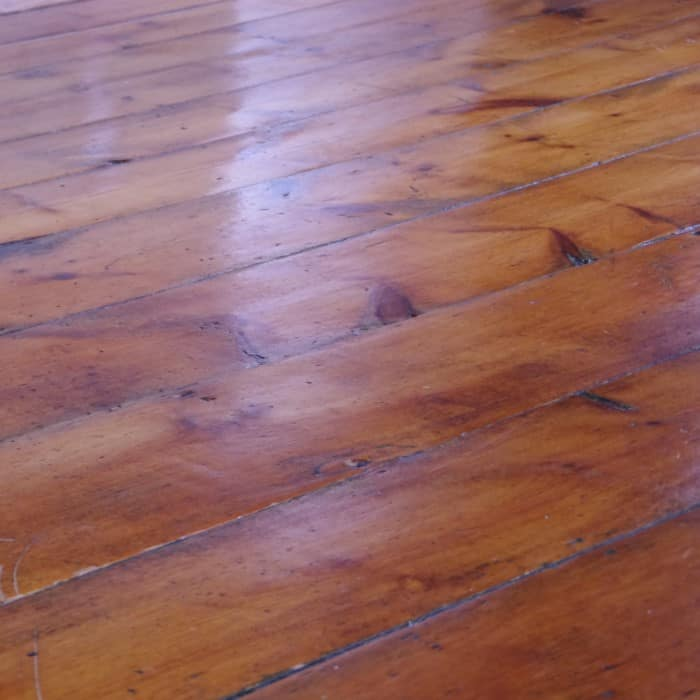 Early American Wood pumpkin pine floor